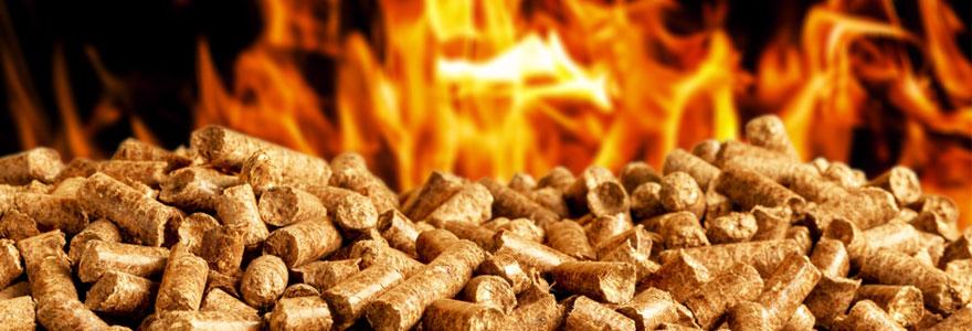 des granulés de bois